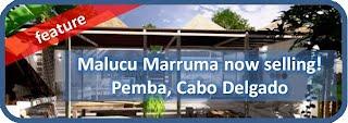 Mozambique Beach Properties